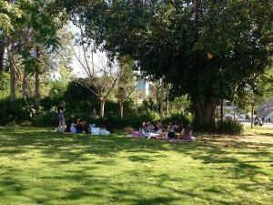 sarona_tel-aviv11