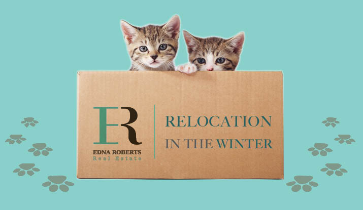 Edna Roberts | Israel Realty Relocation In The Winter